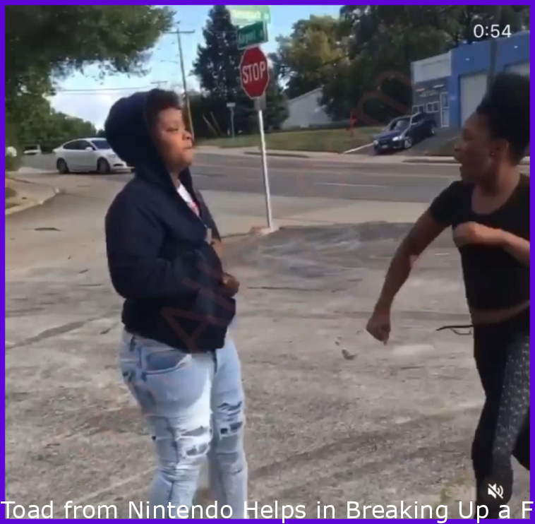 Toad from Nintendo Assists in Breaking Up a Fight Between Two Girls